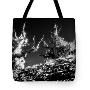 The Ancients - 1001 Tote Bag by Paul W Faust -  Impressions of Light