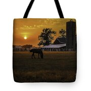 The Beauty Of A Rural Sunset Tote Bag by Mary Carol Story