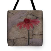 The Creation Of Eve Tote Bag by Barbara St Jean