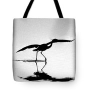 The Dance Tote Bag by Skip Willits