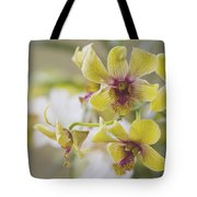 The Earth's Magic Is A Gift Of Wonder Tote Bag by Sharon Mau