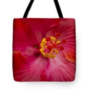 The Expression Of Love Tote Bag by Sharon Mau