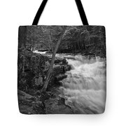 The Falls Tote Bag by David Rucker