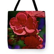 The Geraniums Tote Bag by Gwyn Newcombe