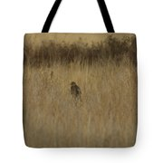 The Hawk 2 Tote Bag by Ernie Echols