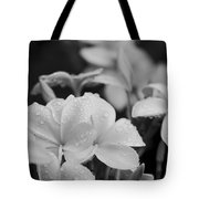 The Joy Of How You Whisper Tote Bag by Sharon Mau