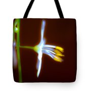 The Light Within Tote Bag by Marie Jamieson