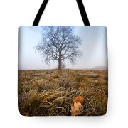 The Lone Oak Tote Bag by Davorin Mance