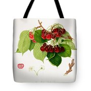 The May Duke Cherry Tote Bag by William Hooker