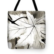 The Mysterious Leaf Abstract Bw Tote Bag by Andee Design