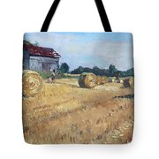 The Old Barns In Georgetown On Tote Bag by Ylli Haruni