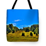 The Old Maple Ridge Ski Area - Old Forge Ny Tote Bag by David Patterson
