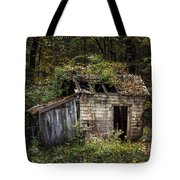 The Old Shack In The Woods - Autumn At Long Pond Ironworks State Park Tote Bag by Gary Heller