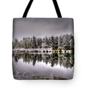 The Red Canoe Tote Bag by Donna Kennedy