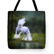 The Reflection Tote Bag by Fran J Scott