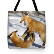 The Rivals Tote Bag by Mircea Costina Photography