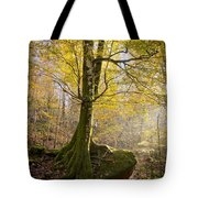 The Rock Tree Tote Bag by Sophie De Roumanie