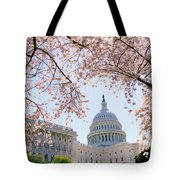 The Seasonal Experience Tote Bag by Mitch Cat