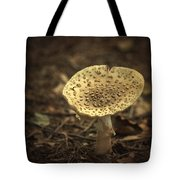 The Slow Passing Of Autumn Tote Bag by Evelina Kremsdorf