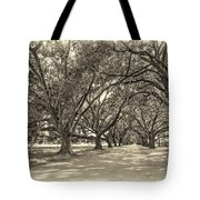 The Southern Way Sepia Tote Bag by Steve Harrington
