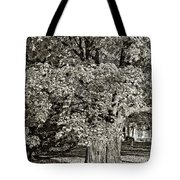 The Swinging Tree sepia Tote Bag by Steve Harrington