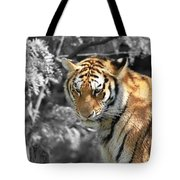 The Tiger Tote Bag by Dan Sproul