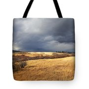 The View From The Side Of The Road Tote Bag by Theresa Tahara