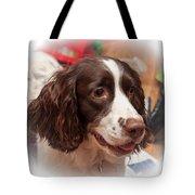 The Wonders Of Christmas Tote Bag by Steve Harrington
