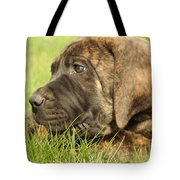 There Is Nothing Better Than A Bone And Some Warm Grass Tote Bag by Jeff Swan