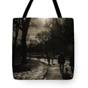 They Come To Central Park Tote Bag by Madeline Ellis