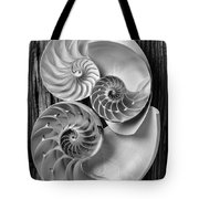 Three Chambered Nautilus In Black And White Tote Bag by Garry Gay