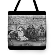 Three Little Shih Tzus Tote Bag by Lena Auxier