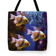 Three Pajama Cardinal Fish Tote Bag by Amy Vangsgard