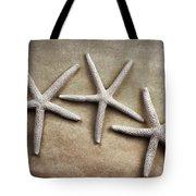 Three Starfish Tote Bag by Carol Leigh