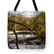 Through The Branches 2 - Central Park - Nyc Tote Bag by Madeline Ellis