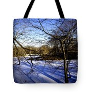 Through The Branches 4 - Central Park - Nyc Tote Bag by Madeline Ellis