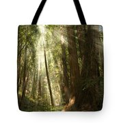 Through The Trees Tote Bag by Mick Burkey