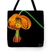 Tiger Lily Tote Bag by Robert Bales