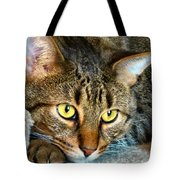 Tiger Time Tote Bag by Michelle Milano