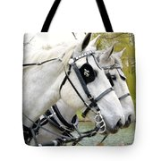 Tillie And Bruce #2 Tote Bag by Jeannie Rhode Photography