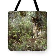 Timber Wolf Tote Bag by Angel  Tarantella