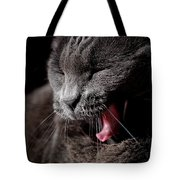 Time For A Nap Tote Bag by Rona Black