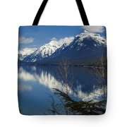 Time For Reflection Tote Bag by Fran Riley
