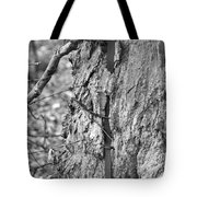Time Swallows Everything Tote Bag by Elaine Mikkelstrup