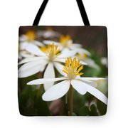 Tiny Dancers Tote Bag by Tom Druin