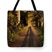 Together Tote Bag by John Daly