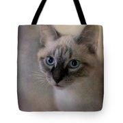 Tomcat Tote Bag by Priska Wettstein