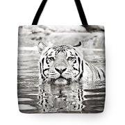 Top Cat Tote Bag by Scott Pellegrin