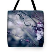 torn and tattered Tote Bag by Shane Holsclaw