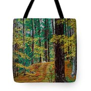 Trail At Wason Pond Tote Bag by Sean Connolly